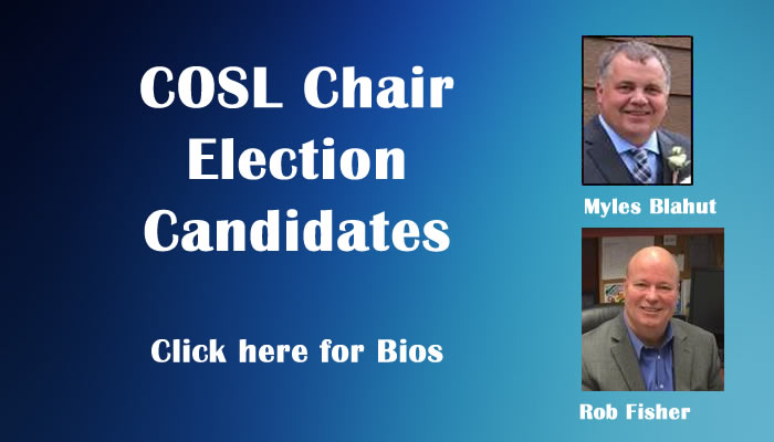 COSL Chair Election Candidates